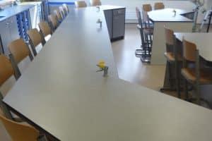 web-moreton-hall-school-06
