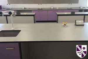 Tarleton Academy Science lab with lilac door fronts.