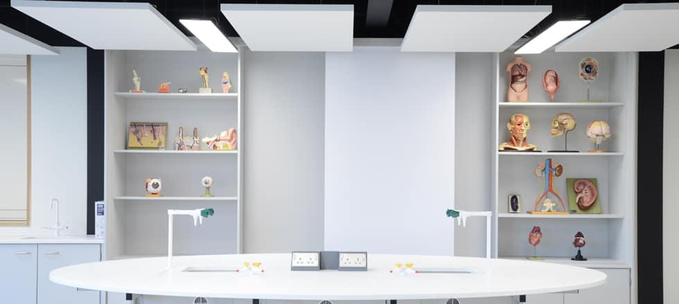 School science lab teaching wall.