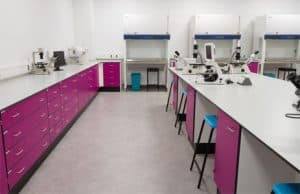York University laboratory and fume cupboard for biology department.
